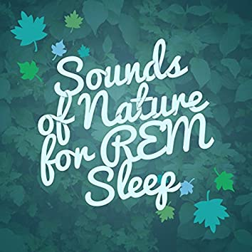 Sounds of Nature for R.E.M. Sleep