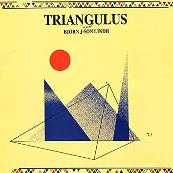 Triangulus featuring Björn J.son Lindh