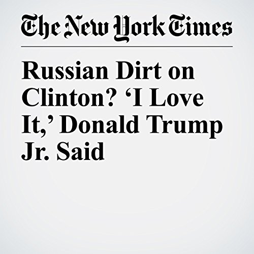 Russian Dirt on Clinton? 'I Love It,' Donald Trump Jr. Said audiobook cover art