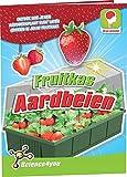 Science4you Fresas de invernadero de frutas