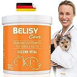 BELISY > Gelenk Vital < Gelenkpulver für Hunde & Katzen - 250g Gelenk Pulver mit Kollagen - Hergestellt & Laborgeprüft in Deutschland - Für mehr Bewegunsgfreude
