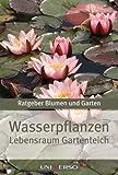 Ratgeber Garten - Wasserpflanzen - Lebensraum Gartenteich