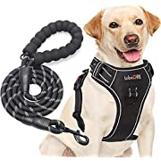 """tobeDRI No Pull Dog Harness Adjustable Reflective Oxford Easy Control Medium Large Dog Harness with A Free Heavy Duty 5ft Dog Leash (XL (Neck: 21.5""""-33"""", Chest: 30""""-39.5""""), Black Harness+Leash)"""