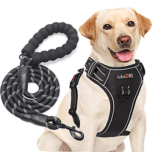 """tobeDRI No Pull Dog Harness Adjustable Reflective Oxford Easy Control Medium Large Dog Harness with A Free Heavy Duty 5ft Dog Leash (L (Neck: 18""""-25.5″, Chest: 24.5″-33″), Black Harness+Leash)"""