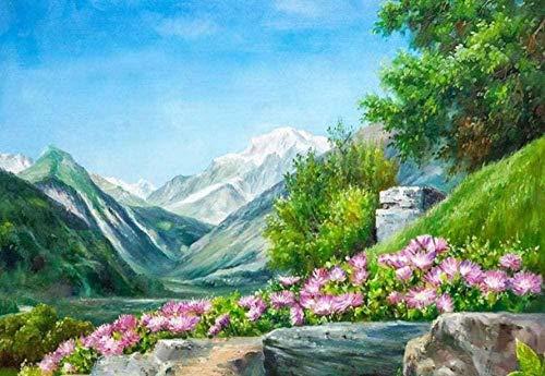 HCDZF Kit de pintura por número de nieve paisaje montaña bricolaje pintura al óleo lienzo con pinceles decoración de Navidad regalos 40,6 x 50,8 cm