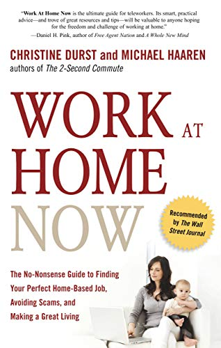 Work at Home Now: The No-Nonsense Guide