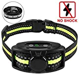 Best Anti Bark Collars - Flittor Bark Collar, NO Shock Anti Barking Dog Review