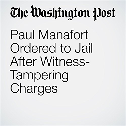 Paul Manafort Ordered to Jail After Witness-Tampering Charges audiobook cover art