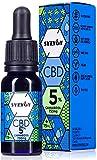 SYZYGY   Auténtico CBD Oil 5%   Aceite de Cáñamo Bio enriquecido con 5% CBD   15ml - 600 gotas Aceite CBD Premium   Hemp Oil con 750mg de Cannabidiol   0% THC