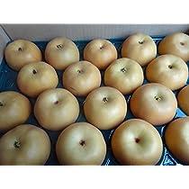 千葉産 梨 幸水 小中玉サイズ 1箱 5kg 16個~22個