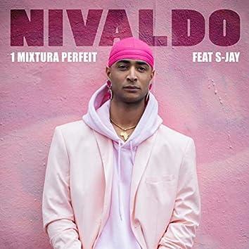 Intro (1 Mixtura Perfeit) [feat. S-Jay]