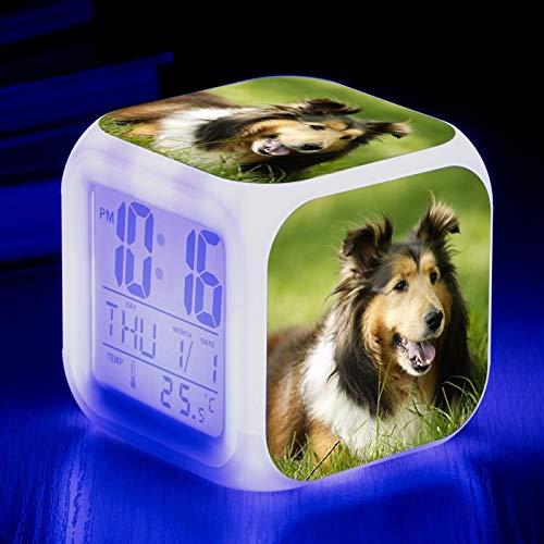 Totots Alarma electrónica Animal Shetland Sheepdog Imprimir Creativo Color Color Cambiante Cuadrado Reloj de alarma Sheepdog Mini Desktop Ornamentos Anime Night Light Snooze Reloj de alarma LED Regalo
