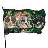 Perro Pastor Australiano Galaxy Bandera de jardín Bandera de interior al aire libre 3 x 5 pies, Banderas de playa duraderas y resistentes a la decoloración con encabezado, fácil de usar