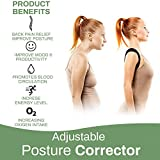 Zoom IMG-1 newlemo fascia posturale spalle e