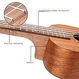 Immagine 1 hricane ukulele concerto mogano con