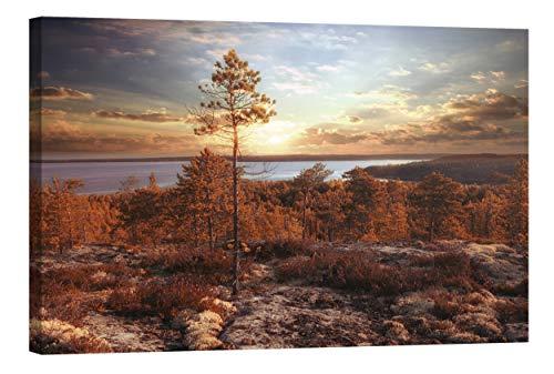Startoshop Wallart Deko-Bild nachleuchtend Leinwandbild Herbst im Wald Wanddeko Wandbild fluoreszierend (ohne Leuchteffekt 80 x 120 cm)
