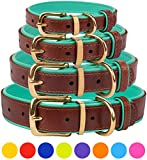 CollarDirect Leather Dog Collar Brass Buckle Soft Padded Puppy Small Medium Large Red Pink Blue Green Purple Yellow (Neck Fit 15'-17', Mint Green)