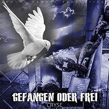 Gefangen oder Frei