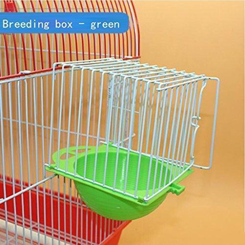 Liuyu · Maison de la Vie Le nid d'oiseau de Perroquet en Plastique Externe accrochant des Accessoires de Cage d'oiseau Cage d'élevage 11 * 10.7 * 10cm (Color : Green)