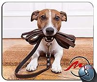 ZMviseかわいい犬背景ファッション漫画マウスパッドマットカスタム四角形ゲームマウスパッド