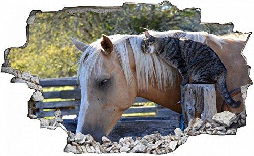 Pferd Katze Tierwelt Wandtattoo Wandsticker Wandaufkleber C0468 Größe 40 cm x 60 cm