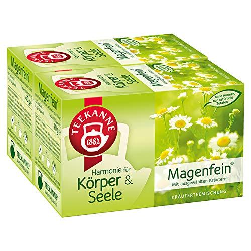 Teekanne Magenfein Kräuterteemischung 20 Beutel, 2er Pack (2 x 40 g Packung)