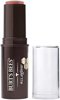 Burts Bees Lip&Cheek Stick #1254 Peach Pond 9,07 g