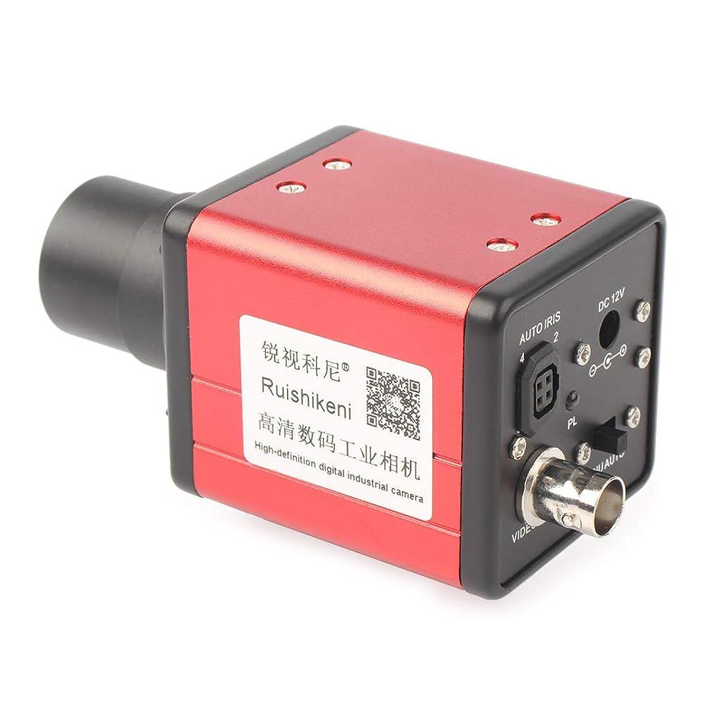 Beautylady 14MP Industrial Microscope Camera Set High Definition Micro Digital Microscope Camera Zoom C-Mount Lens