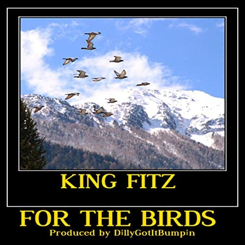 KinG FitZ