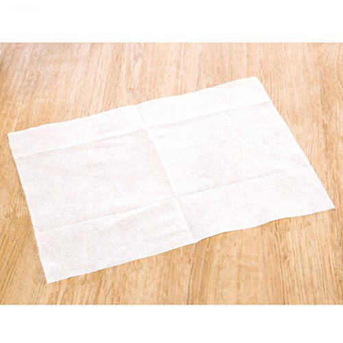 ZaH 100pcs Cleaning Paper Electrostatic Paper Mop Disposable Paper Clean Dust & Hair for Floor, Window, Camera, TV, Wall & Door (Paper)