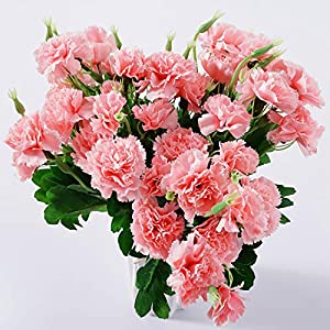 Beferr Artificial Carnation Bouquets Silk Petals Fake Flowers 6pcs Forever Plants for Home Party Wedding Office Table Garden Decoration (Dark Pink)