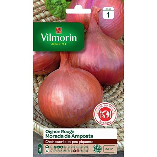 Vilmorin - Sachet graines Oignon rouge Morada de Amposta