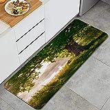 KASABULL Conception Graphique Éléphant Clipart vectoriel Tapis de Cuisine Anti-Fatigue Tapis de Sol Confortables Tapis de Cuisine