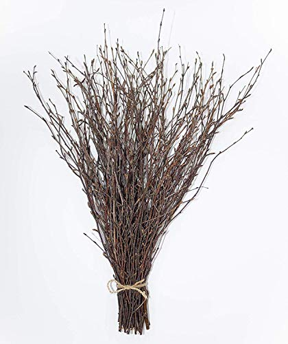 50 psc. Birch Twigs – 100% Natural Decorative Birch Branches for Vases & DIY Crafts – Birch Branches Centerpiece for Decoration (18 Inch)