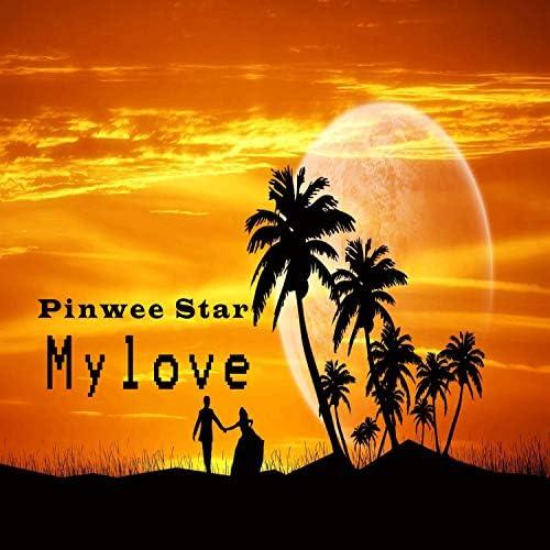 Pinwee Star