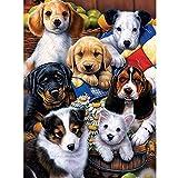 Pintura Por Numeros Diy Dog Set Painting Animal Wall Painting Decoración Para El Hogar A9(40X50Cm Sin Marco)
