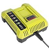 Girapow Ryobi OP401 40V Lithium Ion Battery Charger for Ryobi 40 Volt OP4015 OP4026 OP4026A OP4030 OP4040 OP4050 OP4050A OP4060 OP40261 OP40301 OP40401 OP40501 OP40601 Li-ion Battery