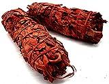 Esoterra Salvia Sang de Dragón Fagots 30 g – Lote de 2 varillas – Purificador 100% na...