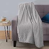 Amazon Basics Weighted Blanket with Minky Duvet Cover - 20lb, 60x80', Dark Grey/Grey