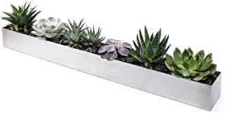 Veradek Geo Trough Planter, 3-Inch Height by 3.5-Inch Width by 32-Inch Length, Stainless Steel (GEVTRSS)
