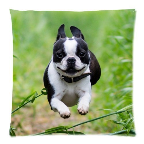 Bulldog Puppy Cushion Case - Decorative Square Throw Cushion Pillow Case Pillow Shell Pillowcase - 18x18 inches, Twin-sided Print