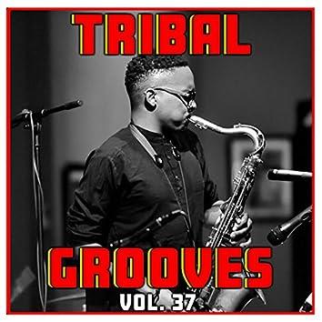 Tribal Grooves Vol. 37