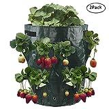 warooma 2pezzi fragola grow bag 10gallon plant grow bag contenitore per giardino con 8-planting tasche per coltivare ortaggi multispecifiche patata, carota