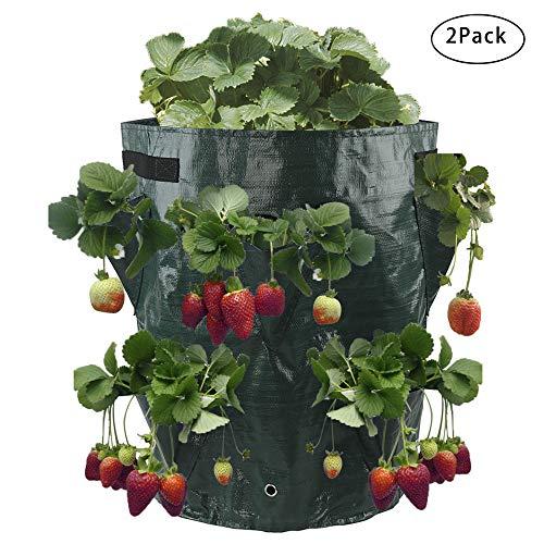 Warooma Erdbeer-Gewächshülle, 2 Stück, 10 l Pflanzgefäß, Pflanztasche mit 8 Pflanztaschen für Pflanzen, Gemüse, Kartoffeln, Karotte, 2 Stück