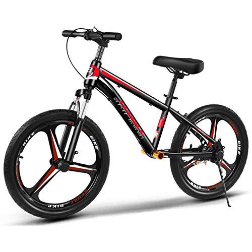 ZAQI Bicicleta sin Pedales Bici Bicicleta de Equilibrio para Adultos con Freno de Mano, Bicicleta de Entrenamiento de Acero sin Pedal para niños y niñas con Ruedas Grandes y Asiento Ajustable
