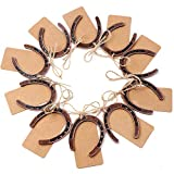 OurWarm 10pcs Good Lucky Horseshoe Wedding Favors with Kraft Tags Rustic Horseshoe Gifts for Vintage Wedding Party Decorations