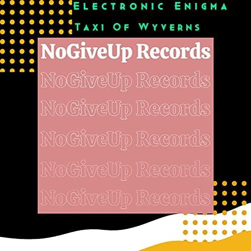 Electronic Enigma