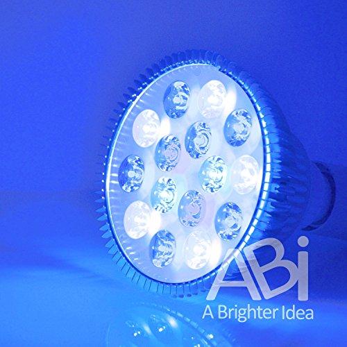 ABI LED Aquarium Grow Light Bulb, 12W (Royal Blue 450-470nm + Cold White 15000K)