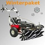 Barredora máquina Tielbürger tk48 Pro de paquete incluye pala de nieve Cepillo de neumáticos de invierno