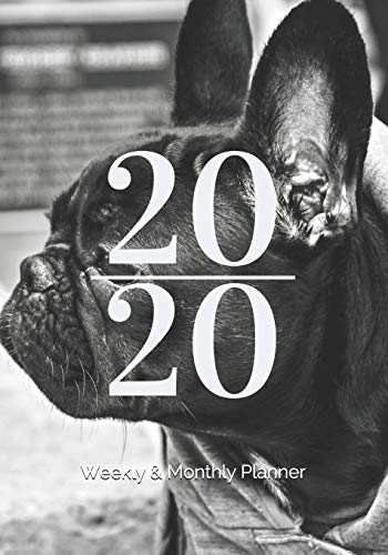 2020 Weekly & Monthly Planner: January 2020 - December 2020, 7' x 10', French Bulldog Cover // Great Gift for Students, Teachers, and Busy ... and weekly views for more detailed planning.